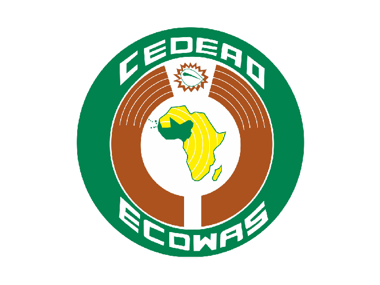 ECOWAS Care Procedures and Standards for the Protection and Reintegration of Vulnerable Children on the Move and Young Migrants